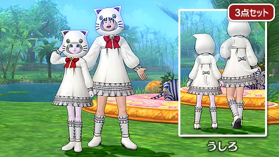 白猫セット【フリーパス】
