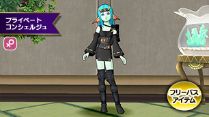 プラコン女性忍の服・黒【フリーパス】