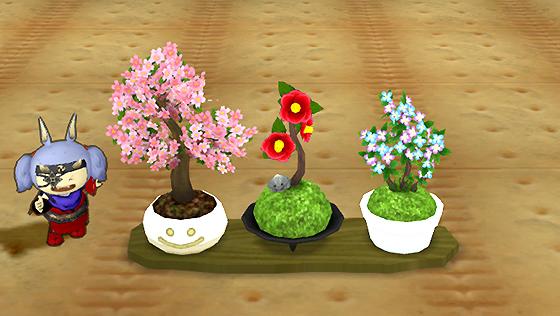 花盆栽セット [FP]