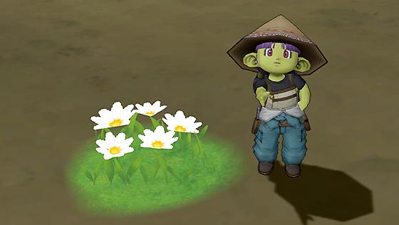 オルフェア白色花[FP]