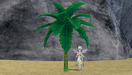 ブーナー熱帯雨林の木A[FP]