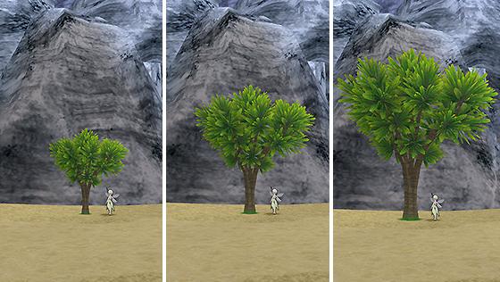 ジュレー島の木C[FP]