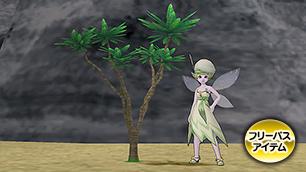 キュララナ海岸の木A[FP]