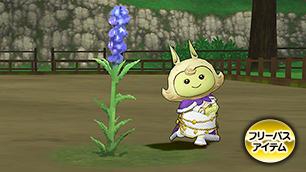 ティプローネ青紫花【フリーパス】