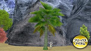 ブーナー熱帯雨林の木B[FP]