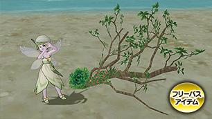 キュララナ海岸の木C[FP]